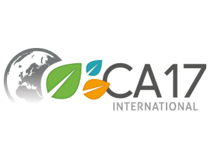 CA17 International